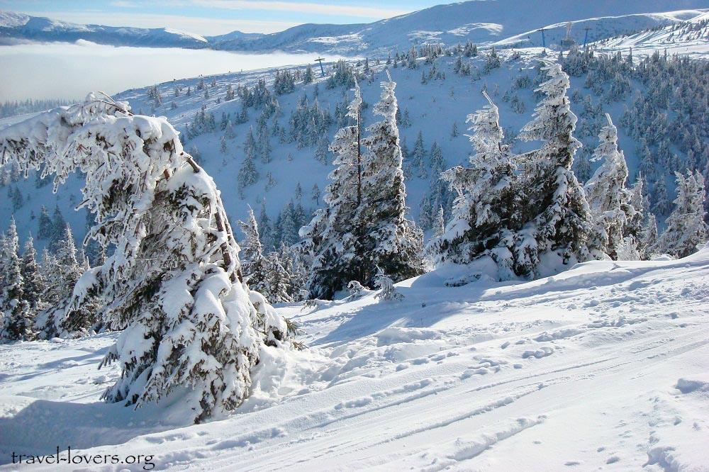 L'hiver dans les montagnes de l'Ukraine